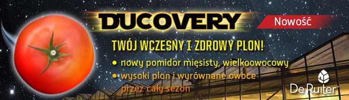 Ducovery